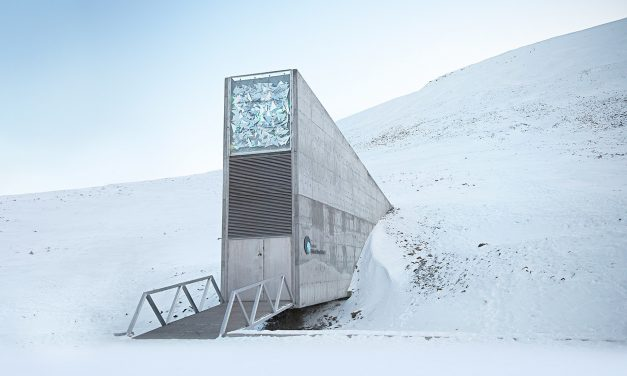 Emergency Global Seed Vault Deemed Safe After Flooding